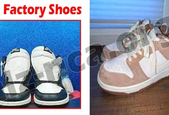 Cn Factory Shoes Online Product Reviews